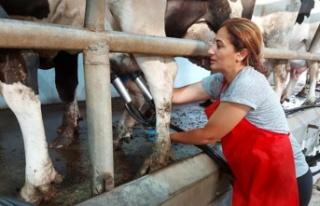 Kelle, 15 Ekim dünya kadın çiftçiler günü dolayısıyla...