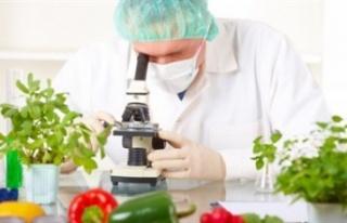 Gıda ve analiz sonuçlarına göre 3 yerli ürün...