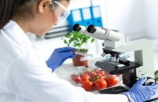 Gıda analizlerinin sonuçları açıklandı