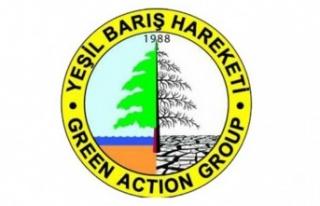 Yeşil Barış Hareketi yarın Karpaz'da dut ağacı...