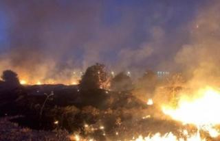 Haspolat'ta çıkan yangında 10 dönüm kuru ot...