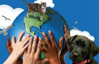 Yeni kurulan Güzelyurt hayvanları koruma derneği'ne...