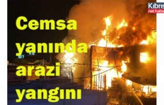 Cemsa yanında yangın
