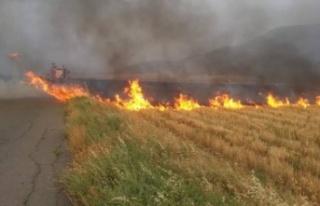 Karpaşa'da arazi yangını çıktı