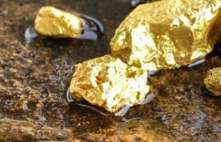 Trodos dağları bölgesinde altın rezervi bulundu