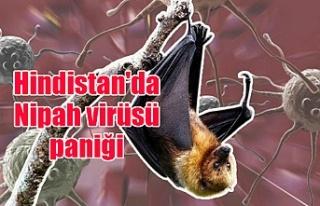 Hindistan'da Nipah virüsü paniği