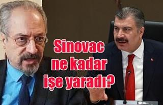 Sinovac ne kadar işe yaradı?