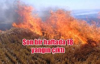 Son bir haftada 18 yangın çıktı