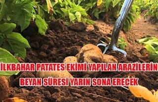 İlkbahar patates ekimi yapılan arazilerin beyan...