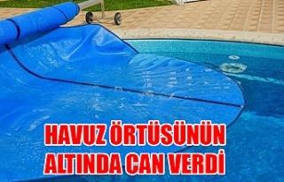Korkunç ölüm! Havuz örtüsünün altında can...