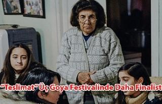 """Teslimat"" Üç Goya Festivalinde Daha Finalist"