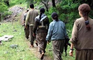 'Babam beni PKK'ya verecek'