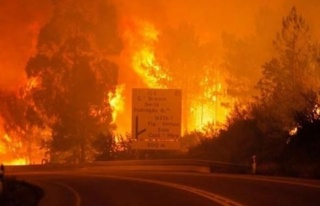 Bir yangın felaketi de o ülkede! 57 ölü