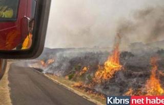 Güney Kıbrıs'ta üç ayrı bölgede yangın!