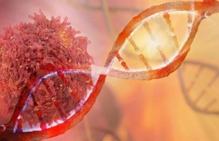 Kanserin DNA'daki Parmak İzini Arıyorlar