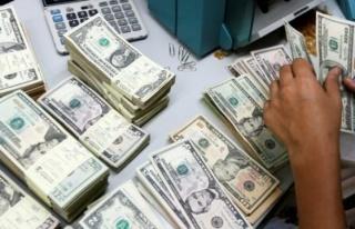 Türkiye'nin Dolar/TL tahmini