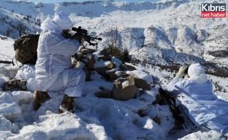 Siirt'te Yıldırım-17 Besta operasyonu devam ediyor