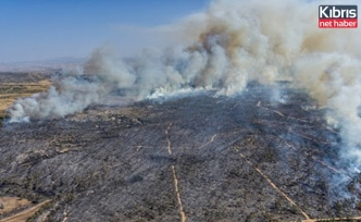 Güney Kıbrıs'ta 3 bin 134 hektarlık alan kül oldu