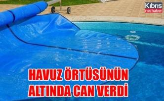 Korkunç ölüm! Havuz örtüsünün altında can verdi!