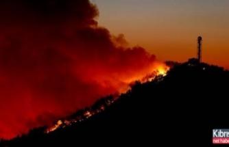 İzmir'de Çıkan Yangın 3 Gündür Söndürülemiyor!