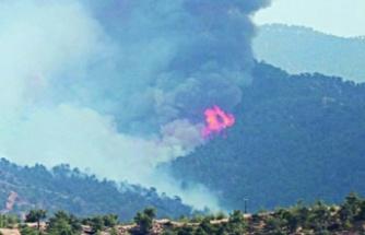 Güney Kıbrıs'ta Yıldırım Yangına Yol Açtı