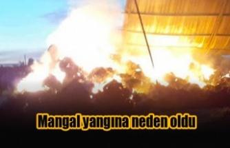 Yüzlerce rulo balya yandı
