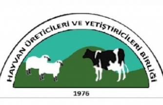 Hayvan Üreticileri ve Yetiştiricileri Birliği yarın Tarım Bakanlığı'na Siyah Çelenk Bırakacak