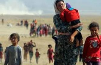 Irak'ta 5 bin 700 Ezidi 6 yıl sonra sincar'a döndü