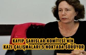 """KÜÇÜK: """"KAYIP ŞAHISLAR KOMİTESİ'NİN KAZI ÇALIŞMALARI 5 NOKTADA SÜRÜYOR"""""""