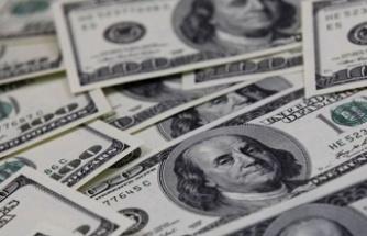 Merkez'in brüt döviz rezervleri 4.25 milyar dolar azaldı