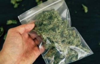 Uyuşturucu madde tasarrufu