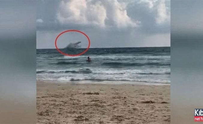 İspanya Hava Kuvvetleri'ne ait uçak düştü