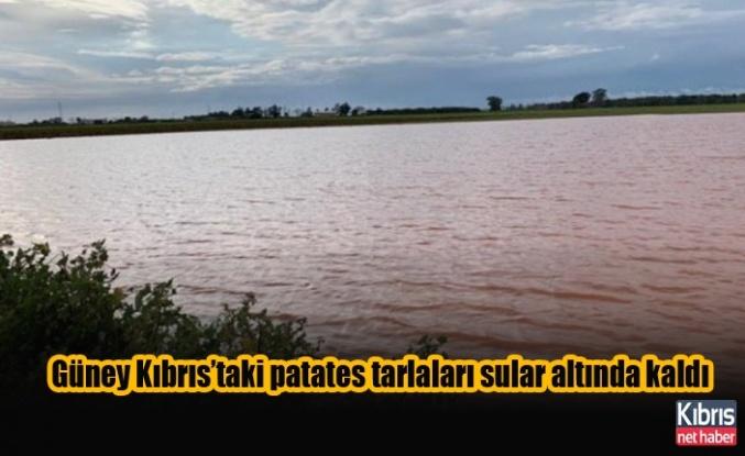 Güney Kıbrıs'taki patates tarlaları sular altında kaldı