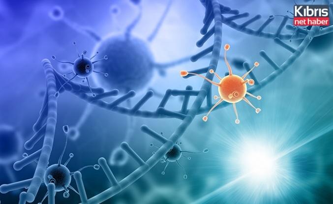 DAÜ Biyolojik Bilimler bölümü akademisyenlerinden covıd-19 ve genetik alanında yayın