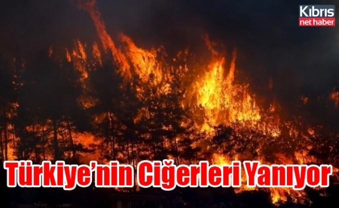 Türkiye'nin Ciğerleri Yanıyor
