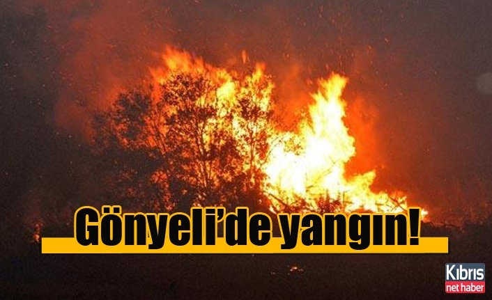 Gönyeli'de yangın!